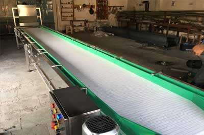 Supplier of Conveyor system for Pharmaceutical industry in India